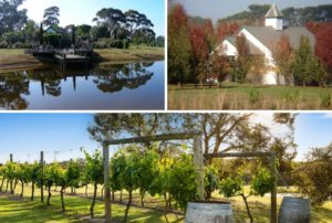 Dalywaters Rose Farm and Garden Chapel feature image
