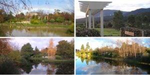 Wooling-Hill-Estate-